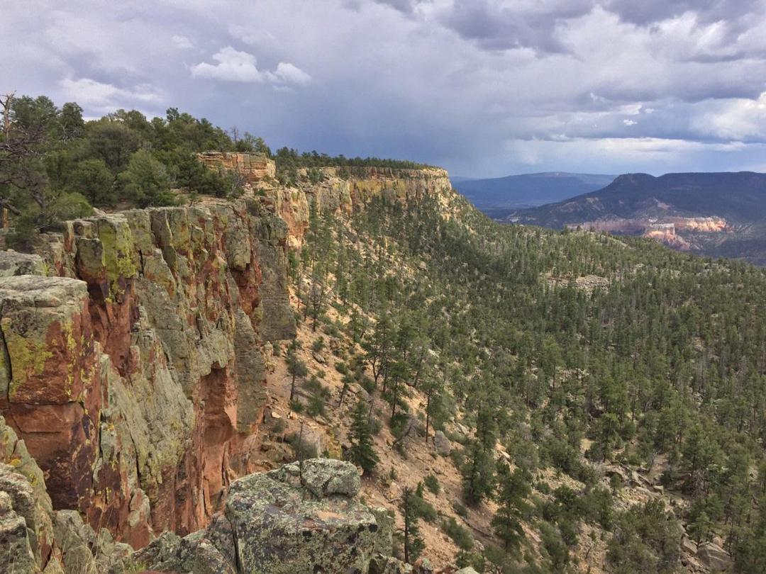 A view of the rim, Joaquin Canyon, Chama River Canyon Wilderness.
